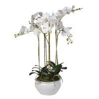 Orchid Flower Arrangement - White Orchid Arrangement - Cream Ceramic Round Pot