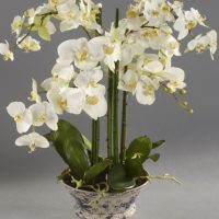 Orchid Flower Arrangement - White Orchid Flower Display - Ceramic Bowl