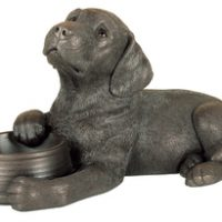 Bronze Labrador Puppy Laid Down With His Water Bowl