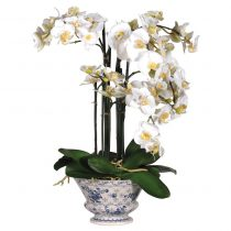 White Orchid Flower Display - White Plants & Moss - Decorative Ceramic Bowl