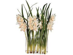 Orchid Flower Display - Cream Orchid Cymbidium Leaves - Glass Vase