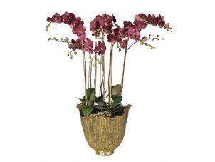 Orchid Flower Arrangement - Damson - Antiqued Gold Pot