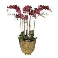 Orchid Flower Arrangement - Damson Coloured - Antiqued Gold Decorative Pot