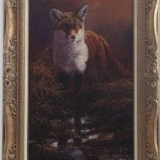 Stephen Cummings 'Woodland Fox' Original Oil Painting