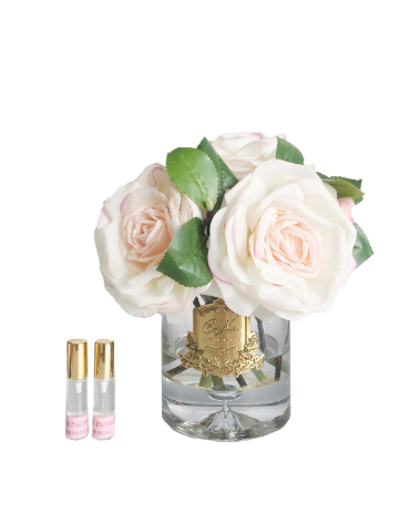 Tea Rose - Luxury Tea Rose Cote Noire Display - Limited Edition Pink Blush