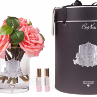 Tea Rose - Luxury Tea Rose Cote Noire Display - White Peach