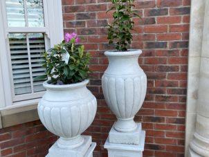 Designer Garden Planter - Cement Finish - Light Cream Finish